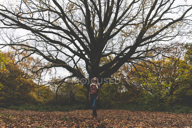 Mid adult woman standing in park in front of old tree — Stock Photo