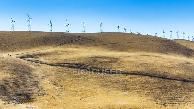 Wind turbines on rolling hills under clear blue sky — Stock Photo