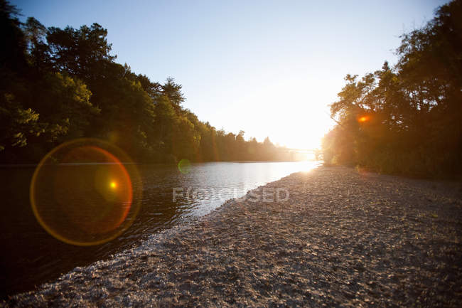 Scenic view of River shore at sunset — Stock Photo