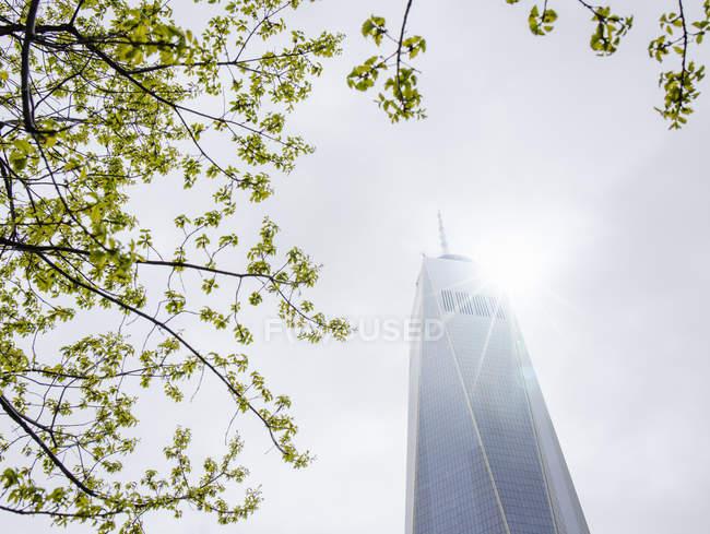 Низький кут зору сонячної філій і один Всесвітнього торгового центру, Нью-Йорк, США — стокове фото