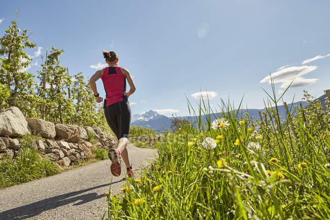 Молодая женщина бежит по сельской дороге, вид сзади, Меран, Южный Тироль, Италия — стоковое фото