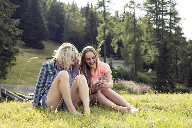 Three female adult friends looking at smartphone in field, Sattelbergalm, Tirol, Austria — стокове фото