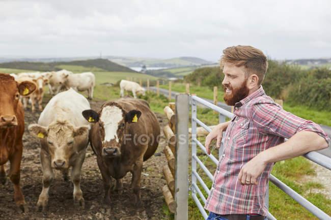 Homme appuyé contre la porte sur la vache ferme à la recherche de suite — Photo de stock
