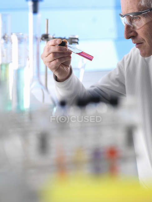 Scientist preparing chemical experiment in laboratory — Stock Photo