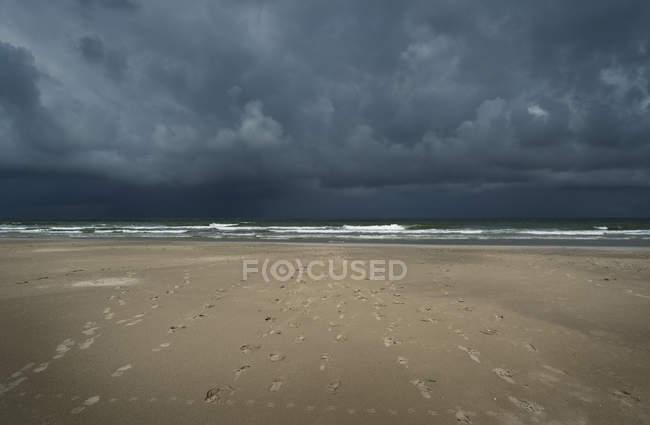 Nuages d'orage sur la plage et du Nord, mer, NDA, Frise, Pays-Bas — Photo de stock
