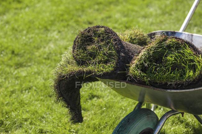 НД запалили рулонах дерну в Тачки садові — стокове фото