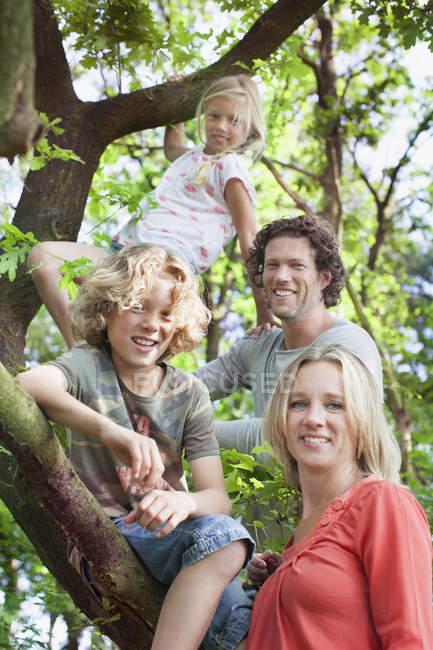 Familie im Waldkletterbaum blickt lächelnd in die Kamera — Stockfoto
