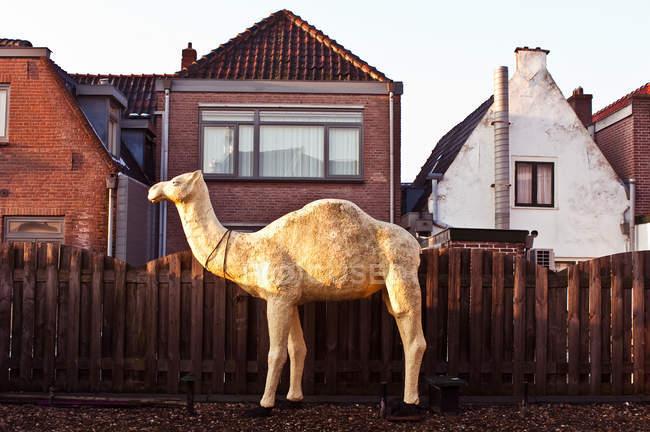 Sculpture de chameau à l'extérieur de la maison par clôture — Photo de stock
