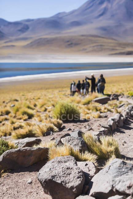Vue floue sur les touristes Personnes visitant le lac miscanti, San Pedro de Atacama, Chili — Photo de stock