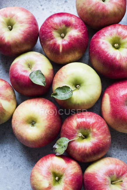 Vista superiore delle mele rosse fresche con lascia sul tavolo — Foto stock