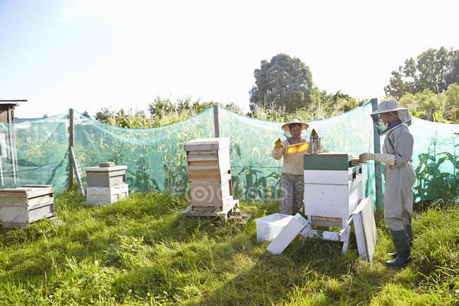 Дві жінки бджолярів працює над містом виділення — стокове фото