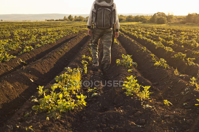 Back view of Backpacker standing on vegetable farm, Sarsy village, Sverdlovsk region, Russia — Stock Photo