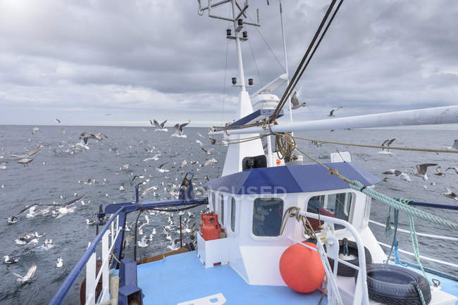 Deck view of fishing trawler with seagulls at sea — Stock Photo