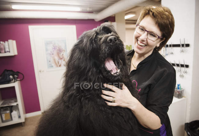 Ritratto di cane e toelettatore nel salone di toelettatura del cane — Foto stock