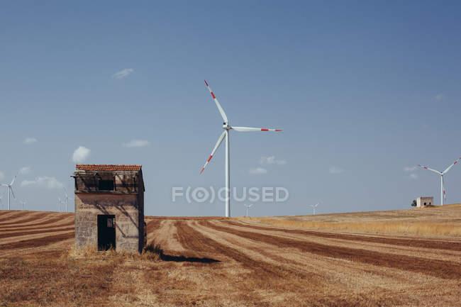 Éoliennes sur le champ de la culture avec un ciel bleu — Photo de stock