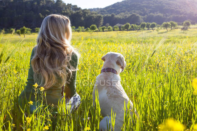 Rear view of mature woman and labrador retriever sitting in sunlit wildflower meadow — Stock Photo