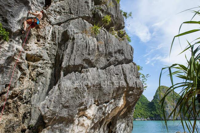 Людина скелелазіння скелі в затоку Халонг, В'єтнам — стокове фото