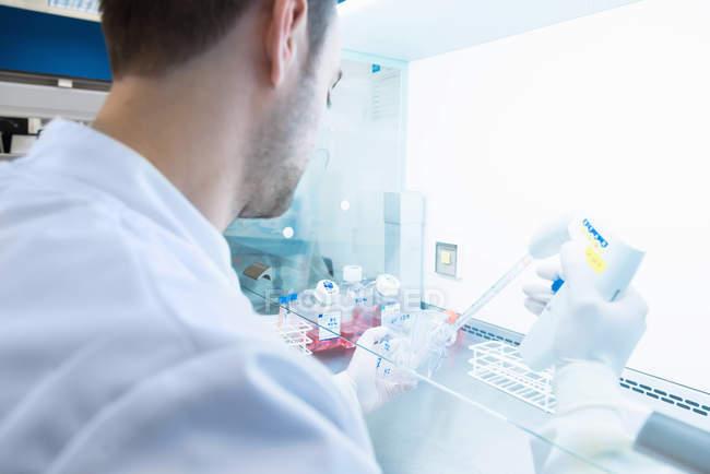 Дослідницька лабораторія раку, науковець чоловічої статі розсилає клітини електронним трубопроводом. — стокове фото