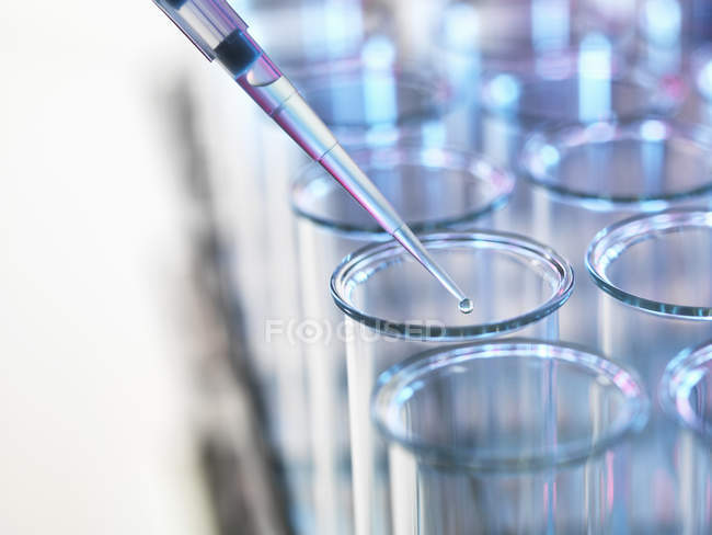 Pipette adding sample to a test tube in a laboratory — Stock Photo