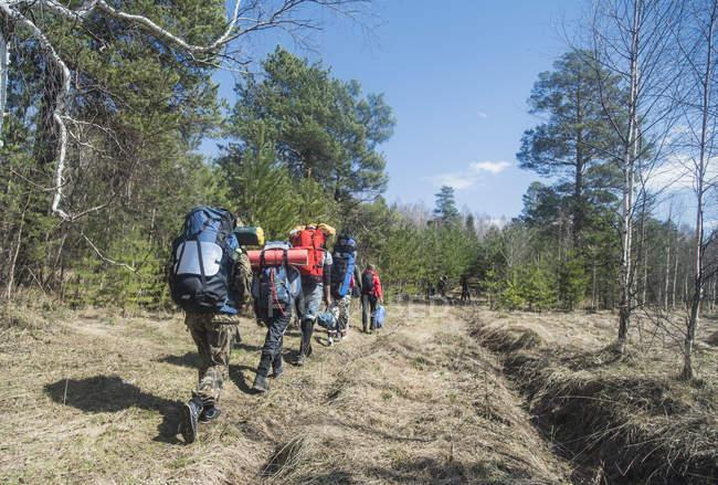 Visão traseira de jovens caminhantes com mochilas na trilha florestal — Fotografia de Stock
