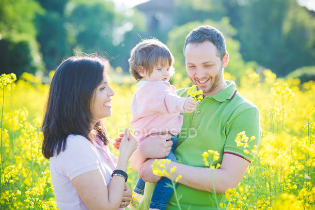Couple and toddler daughter in yellow blossom field — Stock Photo