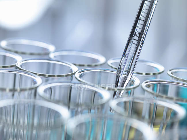 Cropped view of graduated pipette pipetting liquid into test tubes — Stock Photo