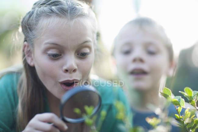 Брат и сестра смотрят на растения с лупой в саду — стоковое фото
