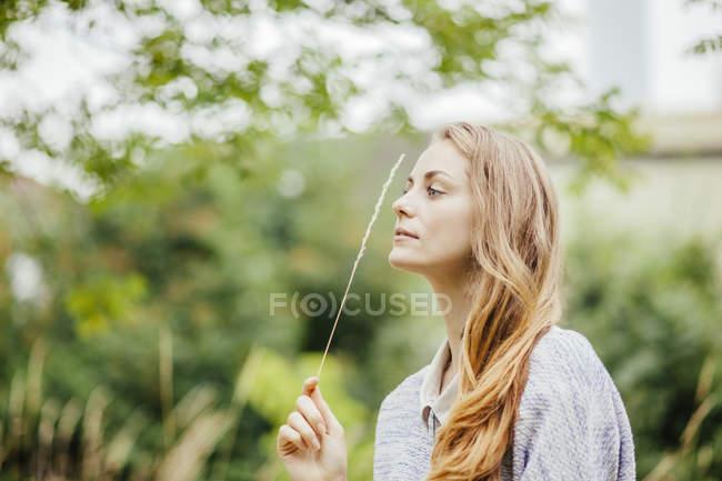 Молодая женщина в поле держит стебель длинной травы — стоковое фото