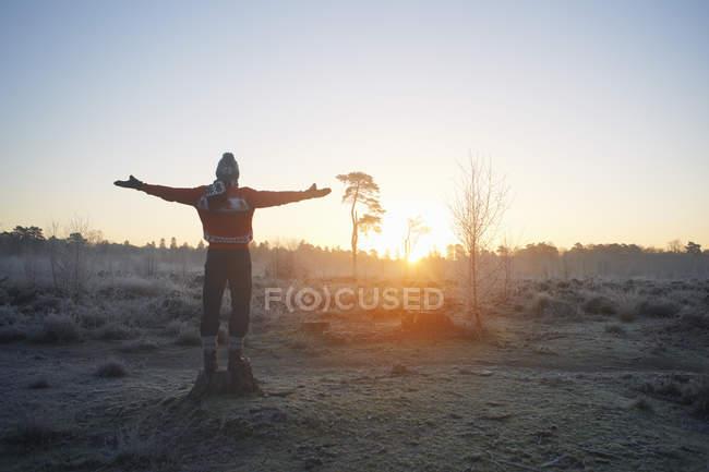 Vista trasera del hombre con los brazos abiertos en la escena de invierno rural soleada - foto de stock