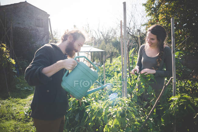 Young man watering plants with watering can — Stock Photo