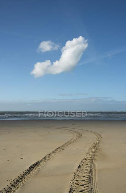 Beach with vehicle tire tracks, Gravelines, Nord-Pas-de-Calais, France — Fotografia de Stock