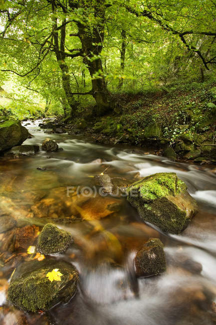 Time lapse view of rocky creek — Stock Photo