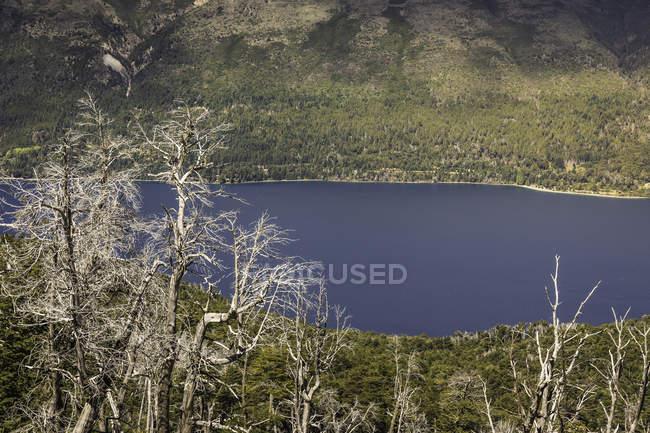 Paisaje del valle con lago y árboles desnudos, Parque Nacional Nahuel Huapi, Río Negro, Argentina - foto de stock