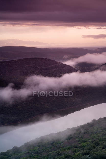 Niebla del balanceo sobre ladera rural - foto de stock
