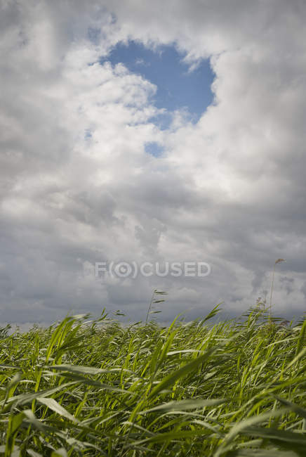 A hole in the clouds in the Frisian lake district, Sneek, Friesland, Netherlands — Stock Photo