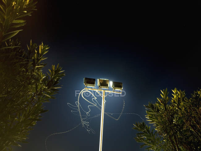 Insect light trails in front of floodlight at night — Stock Photo