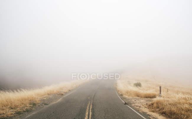 Пустая туманная дорога, Фэрфакс, Калифорния, США, Северная Америка — стоковое фото