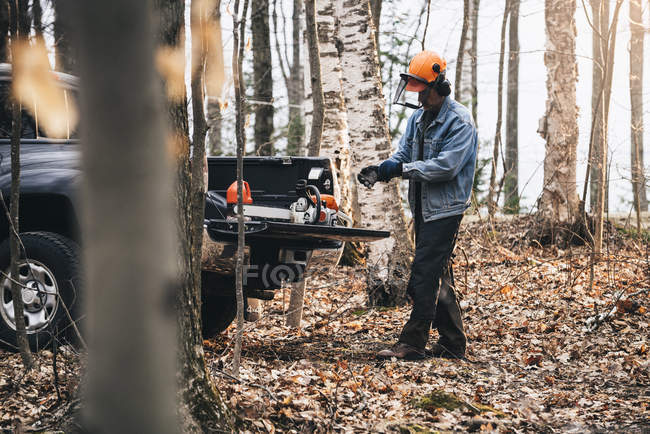 Male logger putting on protective gloves in autumn forest — Stock Photo