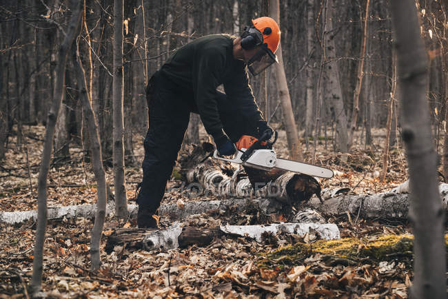 Homme mûr tronçonnage tronc d'arbre sur le sol forestier d'automne — Photo de stock