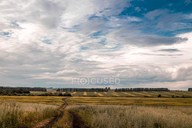 Rural scene, Ural, Sverdlovsk, Russia, Europe — Stock Photo