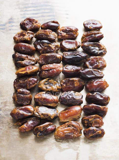 Vue de dessus des dates séchées en rangées sur la surface blanche — Photo de stock