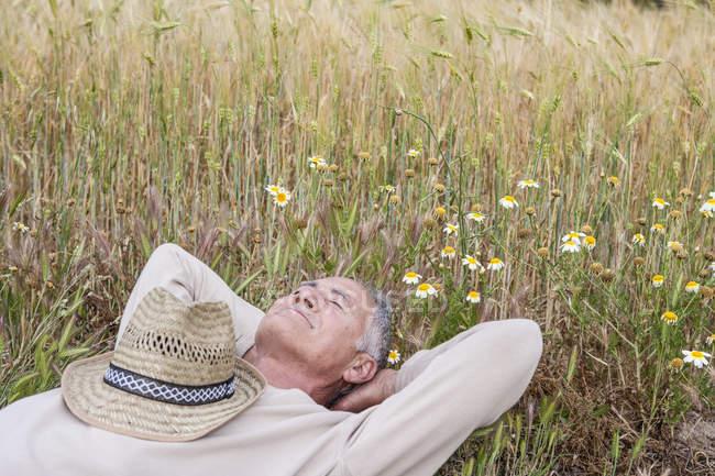 Homme avec les mains derrière la tête couché dans la prairie de fleurs sauvages — Photo de stock