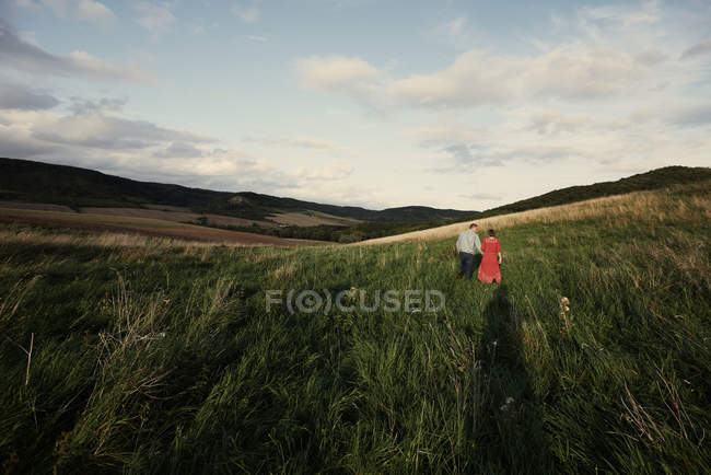 Rear view of couple holding hands and strolling in fields — Stock Photo