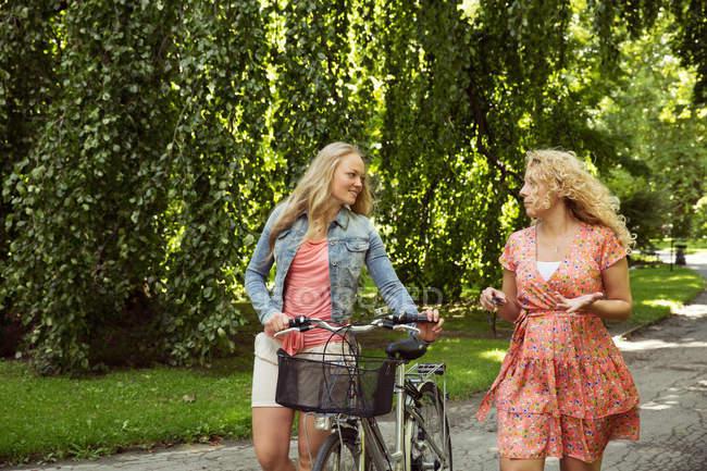 Amigos andando com bicicletas conversando — Fotografia de Stock