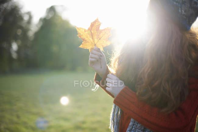 Mujer que sostiene la hoja de otoño en luz del sol - foto de stock