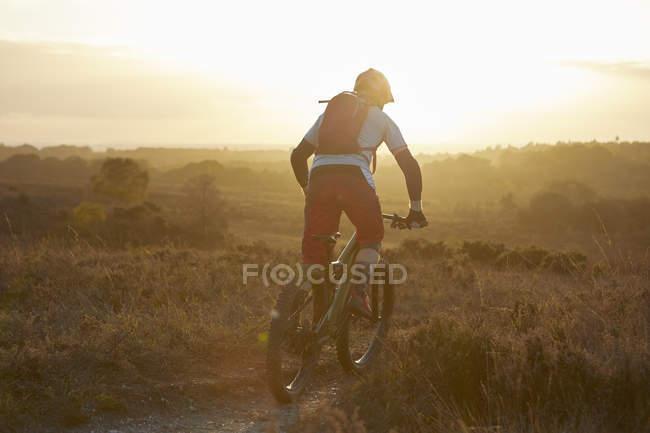 Верховая езда на горном велосипеде по тропе в солнечном свете — стоковое фото