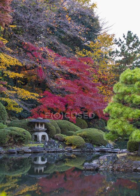 Couleurs d'automne, Jardin national Shinjuku Gyoen, Tokyo — Photo de stock