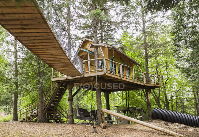 Children's playground and tree house, in residential garden, Quebec, Canada — Stock Photo