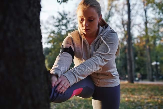 Curvilínea mujer joven entrenando y tocando los dedos de los pies contra el tronco del árbol - foto de stock