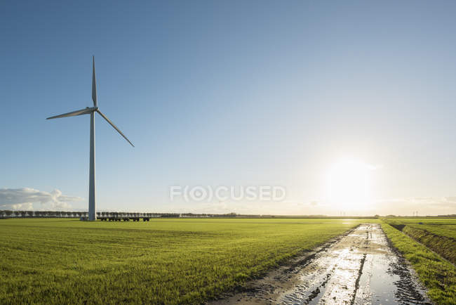 Éolienne sur le terrain, Zeewolde, Flevoland, Pays-Bas, Europe — Photo de stock